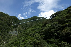 遊歩道から見た吊橋